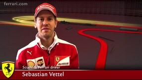 Vettel, i dolci ricordi ungheresi