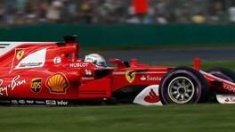 Vettel, con Gina sembra amore a prima vista