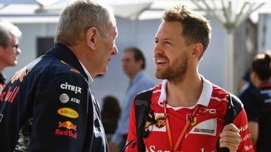 """Formula 1, Marko: """"Vettel è un duro, credo ce la farà"""""""