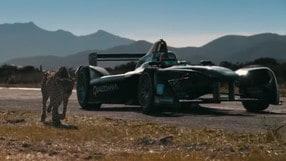 Formula E, Vergne sfida il ghepardo