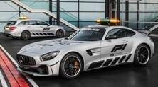 Mercedes Amg Gt R F1: foto