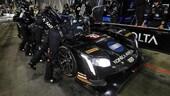24 Ore Daytona, Alonso al via con Cadillac di Wayne Taylor