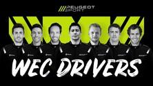 Peugeot, ecco i piloti per l'hypercar WEC